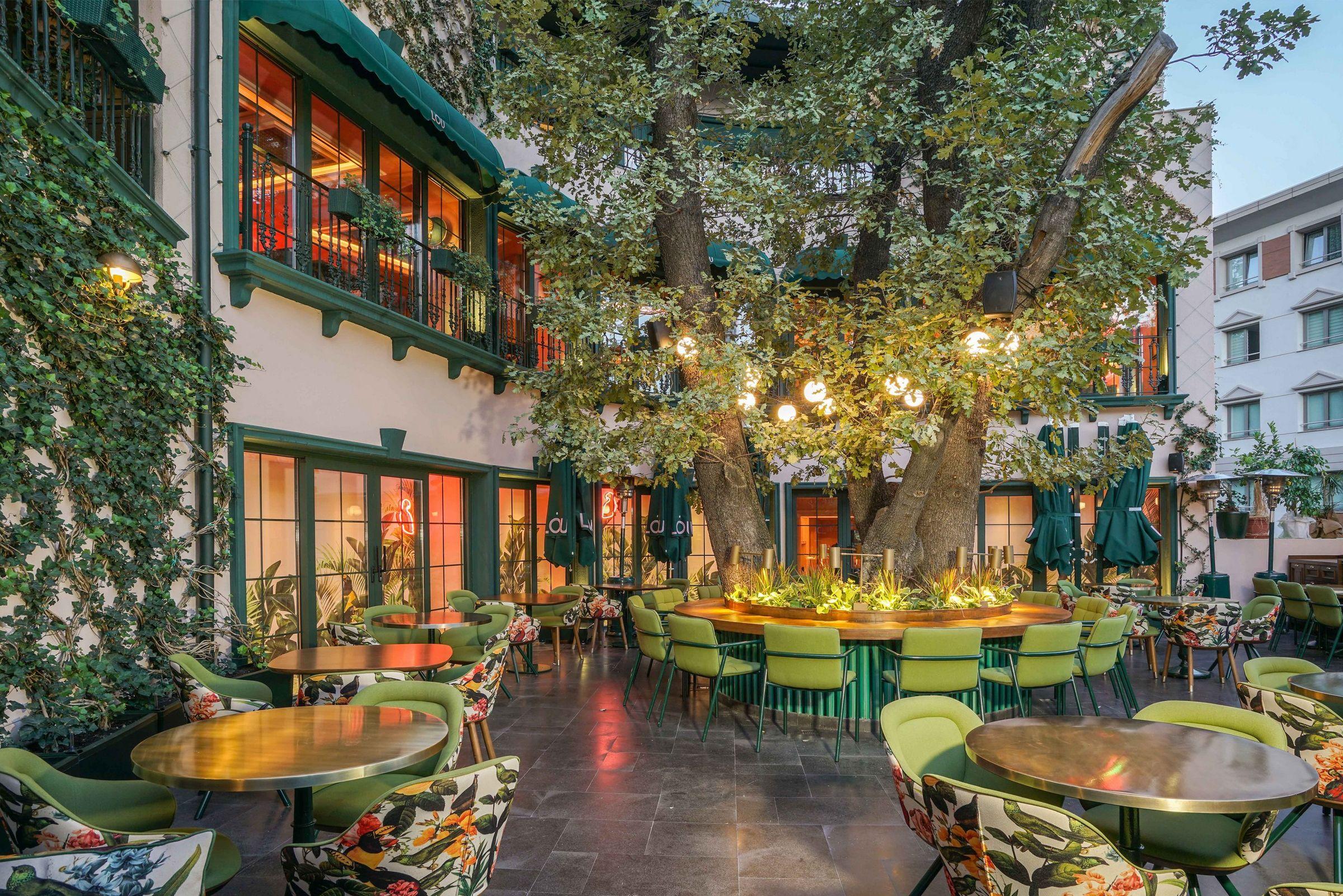 mau quan cafe cay xanh dep hinh that 1 Mẫu thiết kế quán cafe sân vườn đẹp giúp kinh doanh sinh lời giữ chân khách hàng trung thành